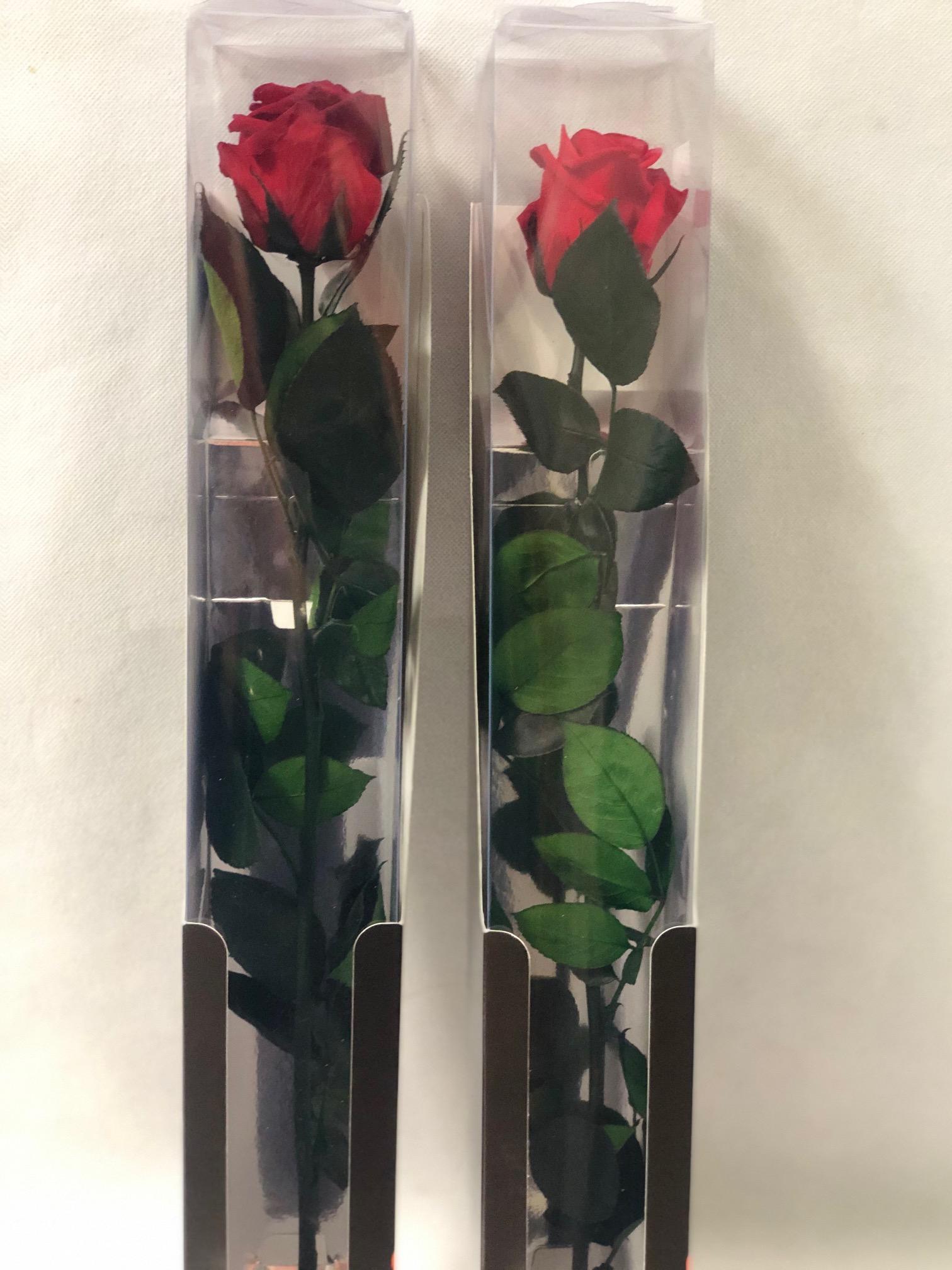 Rosa Amor Eterno